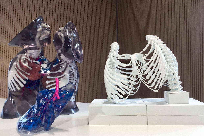 Le stampe in 3 D degli organi