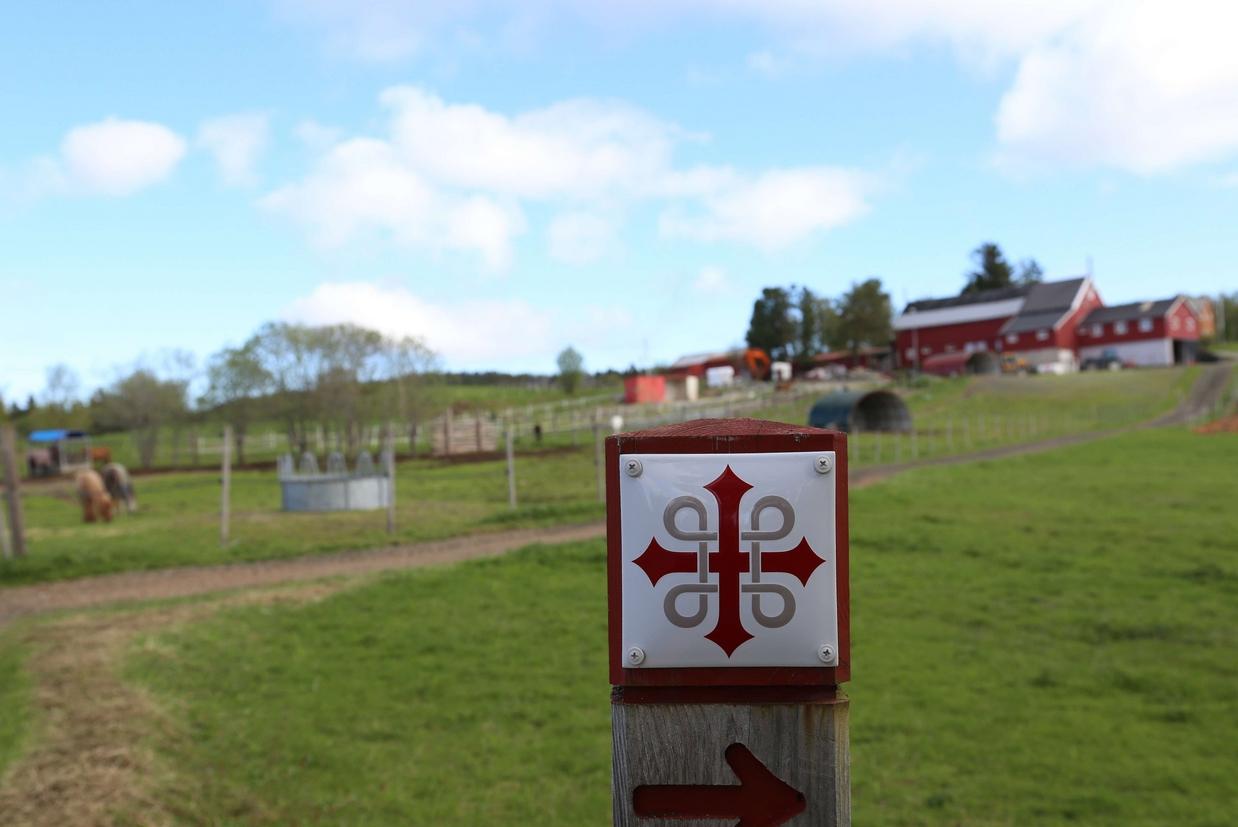 Un punto del cammino di sant'Olav (©Piergiorgio Pescali)