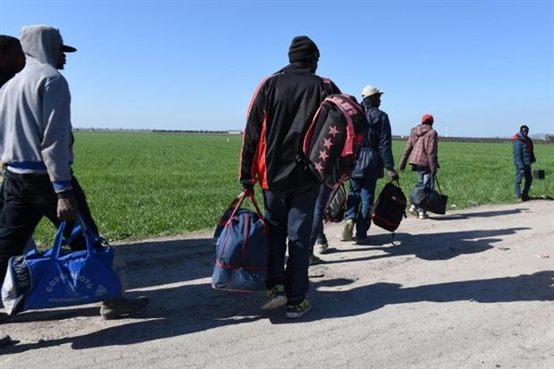 Alcuni profughi in fuga dal 'Gran Ghetto' nei mesi scorsi, dopo lo sgombero avvenuto a seguito del rogo di un anno fa. In realtà, negli ultimi mesi, con l'arrivo delle roulotte in molti sono tornati a lavorare nei campi (Ansa)