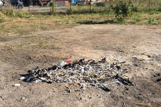 Le tracce degli atti di vandalismo compiuti dai bambini durante il weekend: nell'area, che era stata ripulita e messa in ordine, sono stati gettati mobili e spazzatura e sono stati accesi anche dei falò