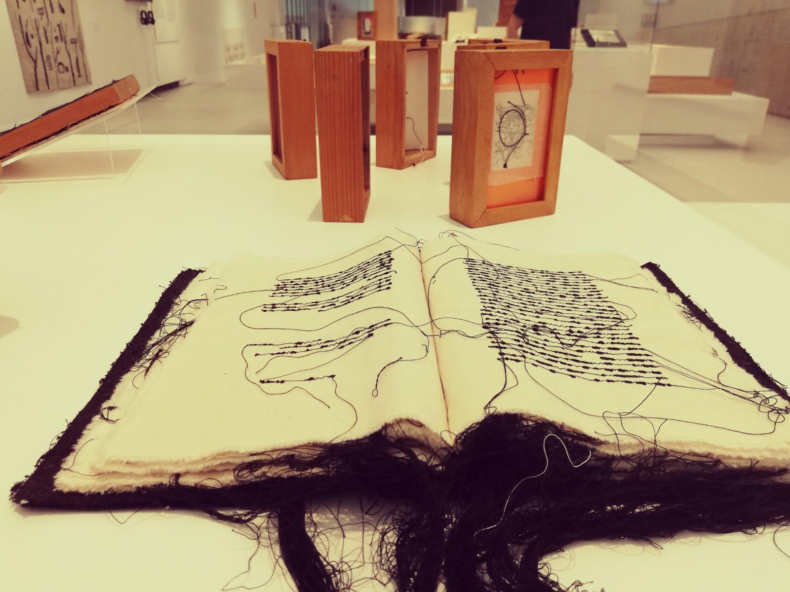 Maria Lai, «Libro scalpo 3» (1987)