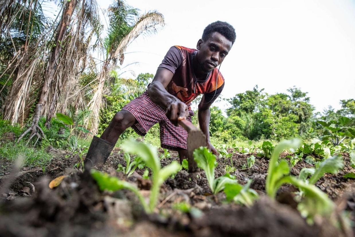 Un progetto di sostegno per le popolazioni dell'Africa