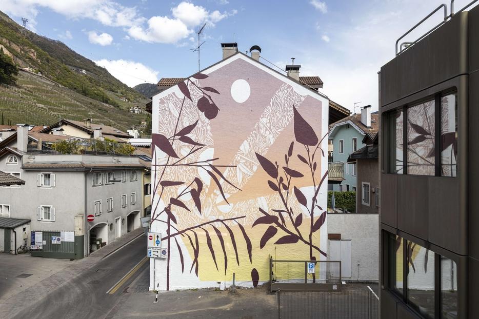 "Tellas ""Mimesi"" series, 2021 Bolzano"