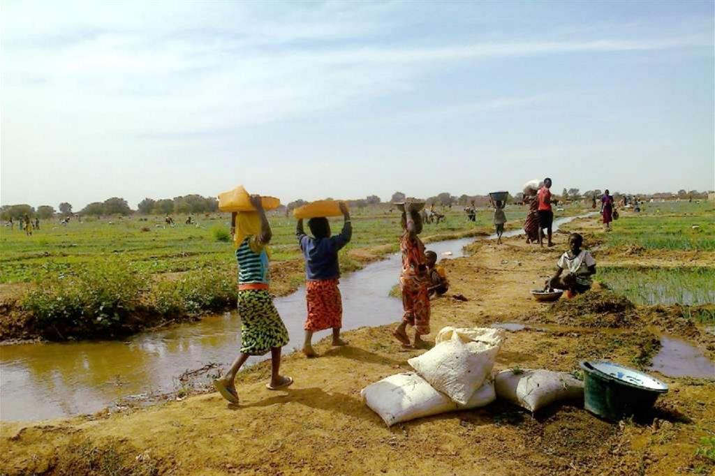 L'irrigazione dei campi nel villaggio di Woudourou avviene con  metodi rudimentali. L'intervento di Green Cross consentirà di installare un vero  sistema di irrigazione. -