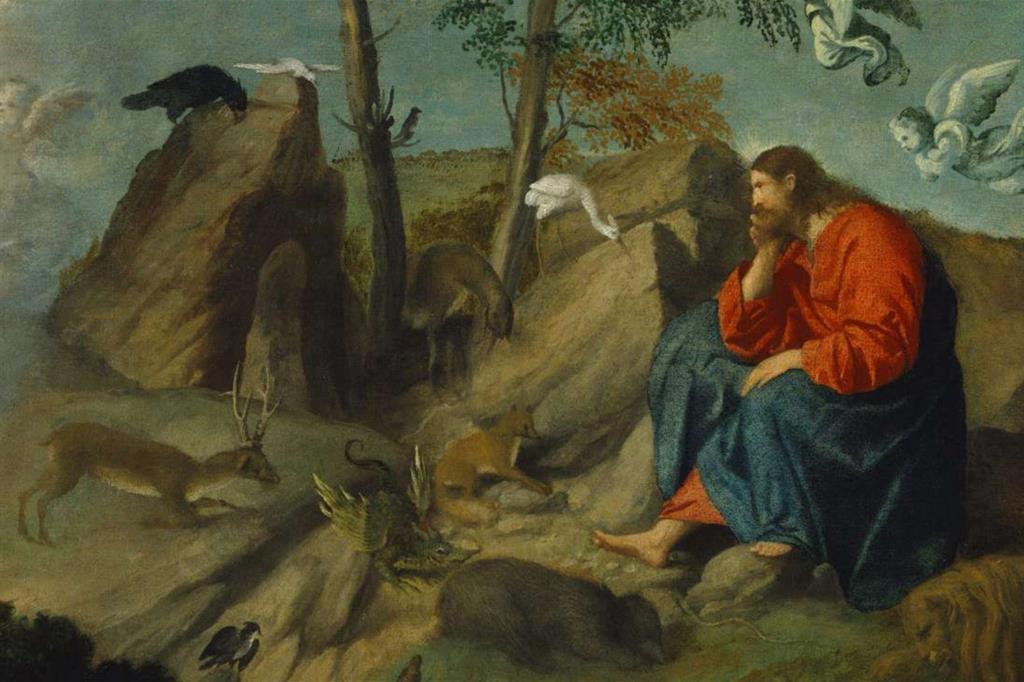 Pecore Uccelli E Asini Che Zoo La Bibbia