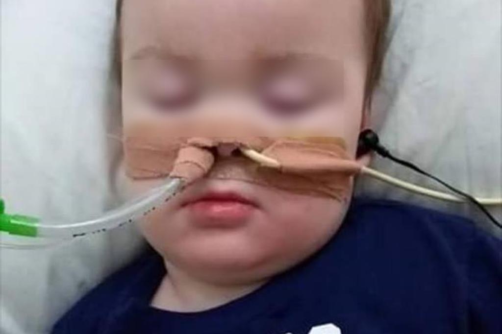 L'immagine del piccolo Alfie è publicata sulla pagina Facebook che conduce la campagna in suo favore