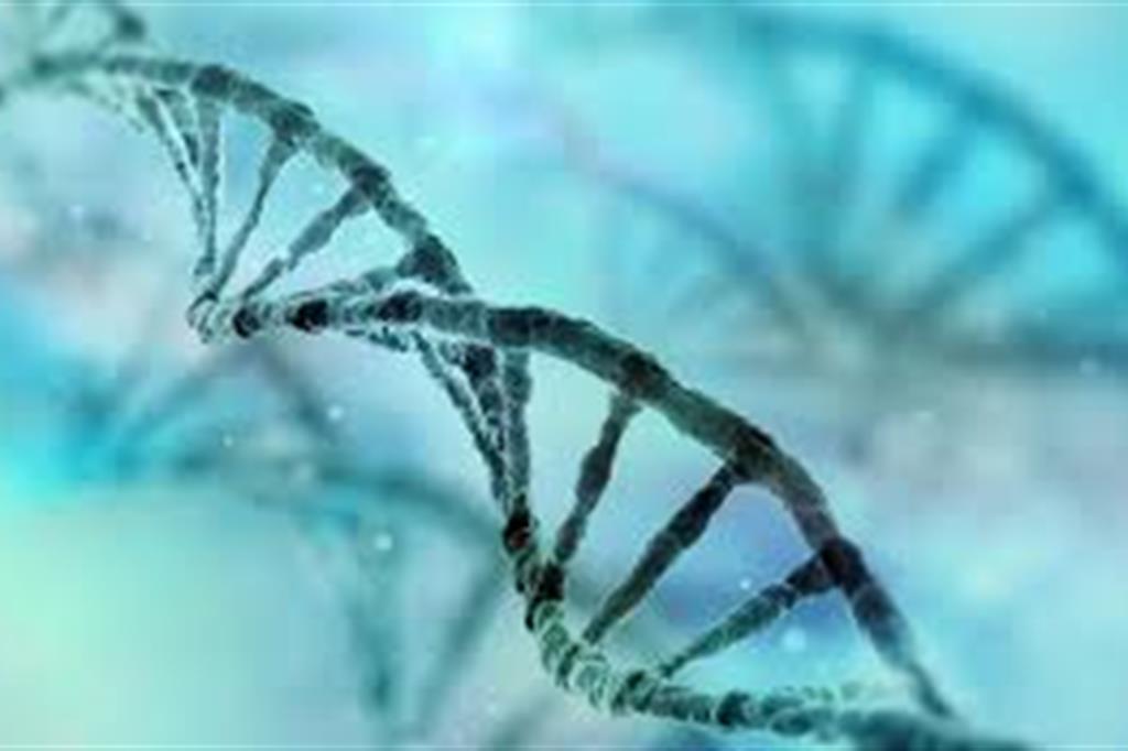 Genomica, biometria, big data: ci serve una nuova bioetica?