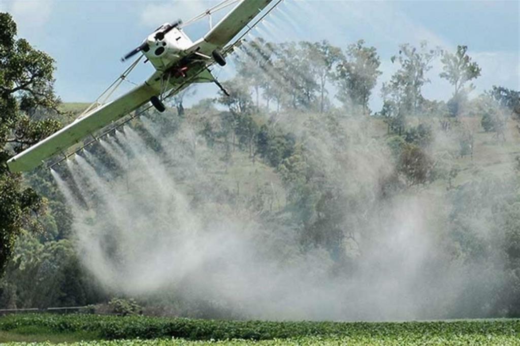 Dalla Ue stop a pesticidi dannosi per le api