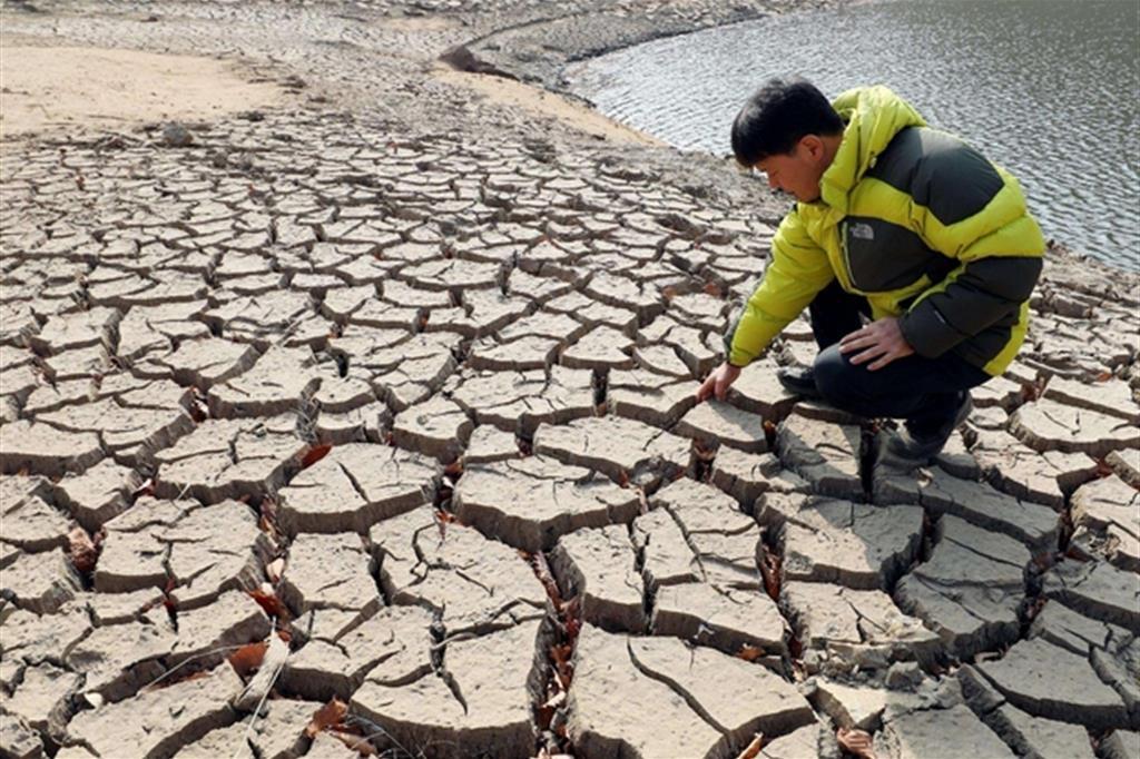 L'Onu lancia le «città-spugna» per il mondo malato di siccità