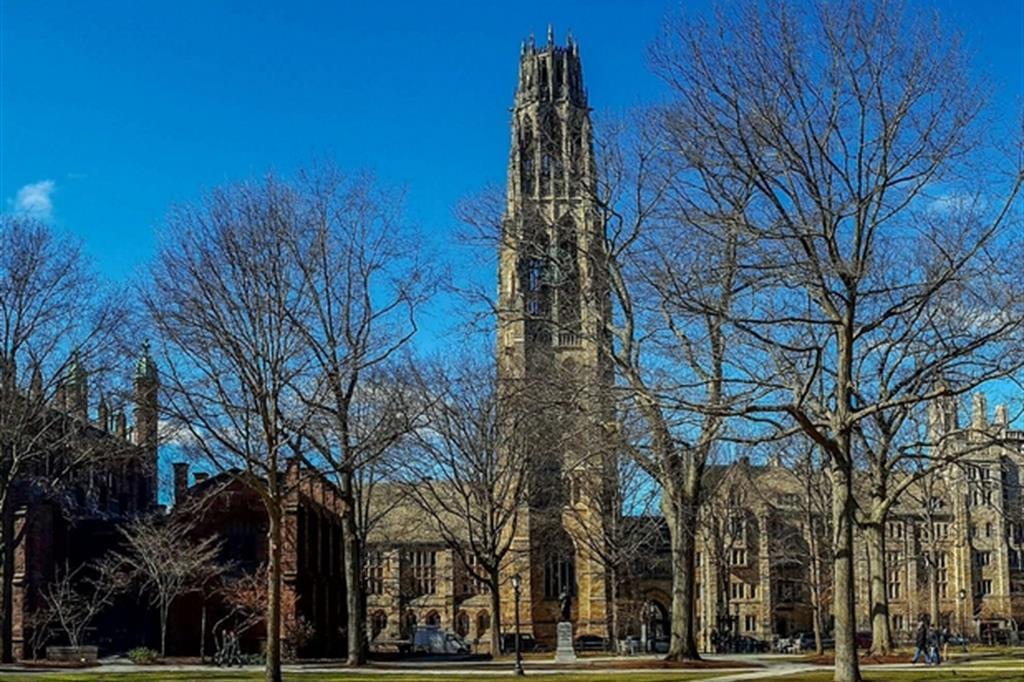 L'università di Yale è stata fondata nel 1701 a New Haven nel Connecticut