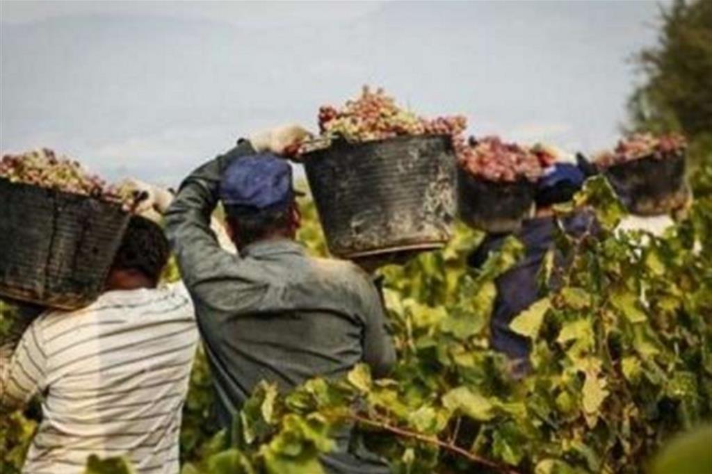 Via libera al decreto flussi per 30mila lavoratori extracomunitari