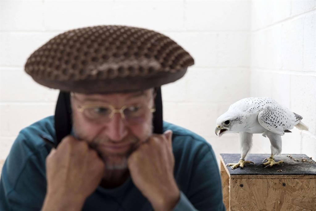 La foto vincitrice nella sezione «Natura, storie»: «Falcons and the Arab Influence» di Brent Stirton, Getty Images for National Geographic. Mostra l'allevatore Howard Waller con un cappello per la raccolta di sperma del falcone (Ansa)