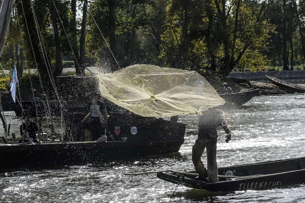 Durante il Festival, c'è anche spazio per rievocare i mestieri fluviali tradizionali, oggi praticati quasi esclusivamente per diletto, come la pesca d'acqua dolce con reti -