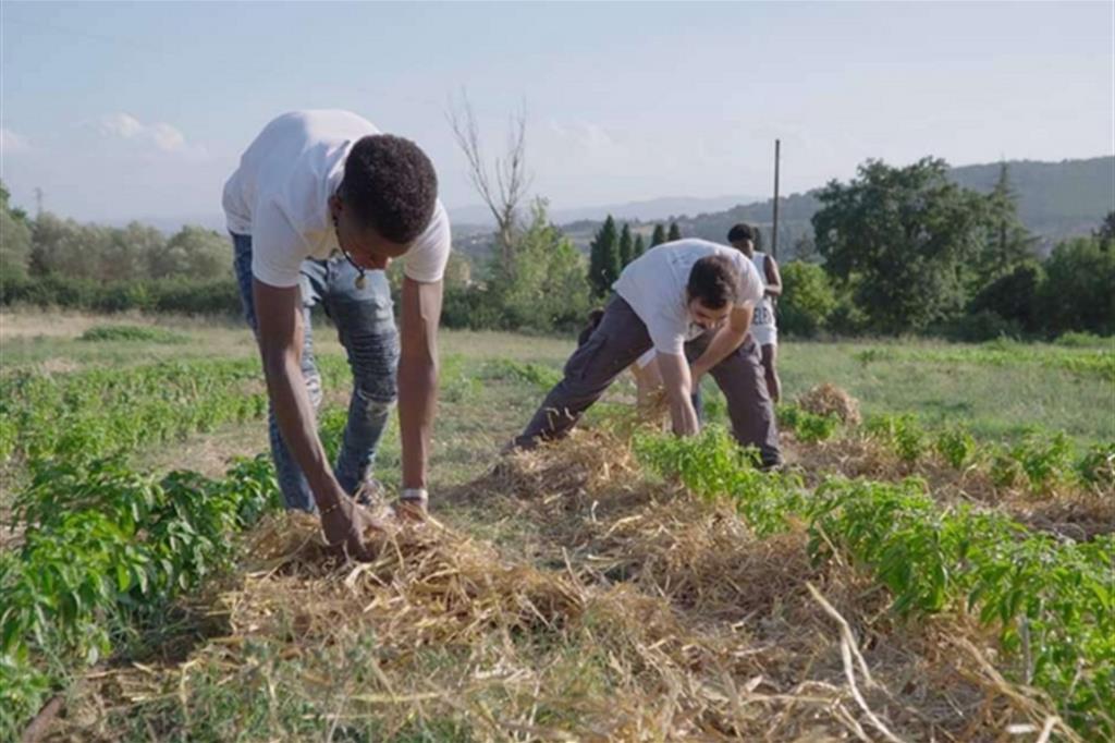 Un orto curato da richiedenti asilo per coltivare assieme la dignità