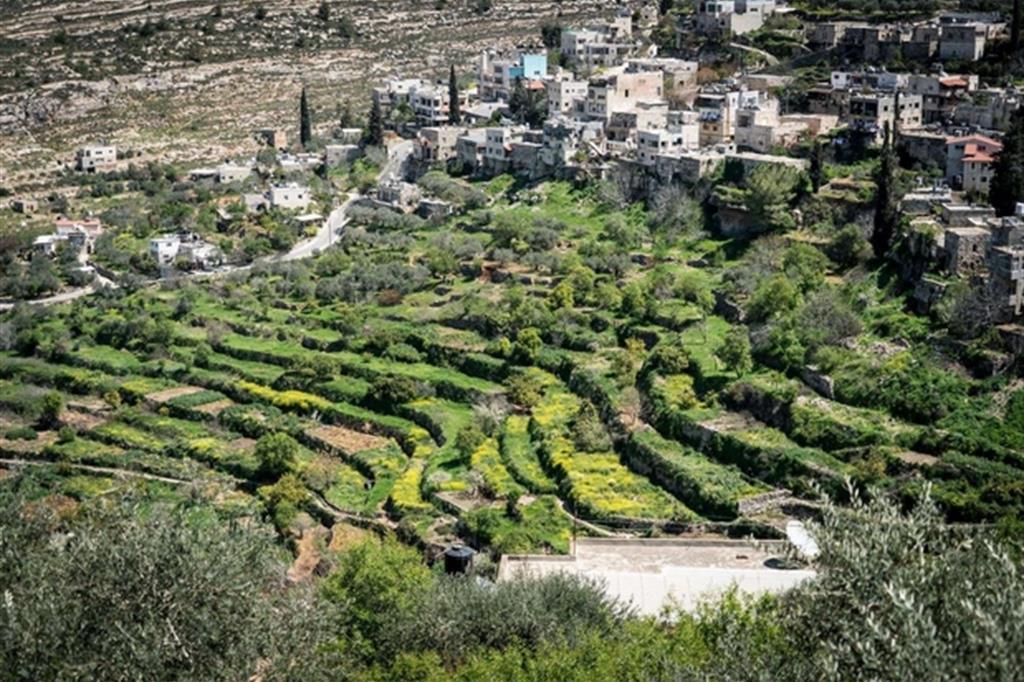 Una veduta aerea del villaggio di Battir con i suoi frutteti e i campi di grano dove lavorano gli agricoltori palestinesi, finora a riparo dallo spettro del Muro