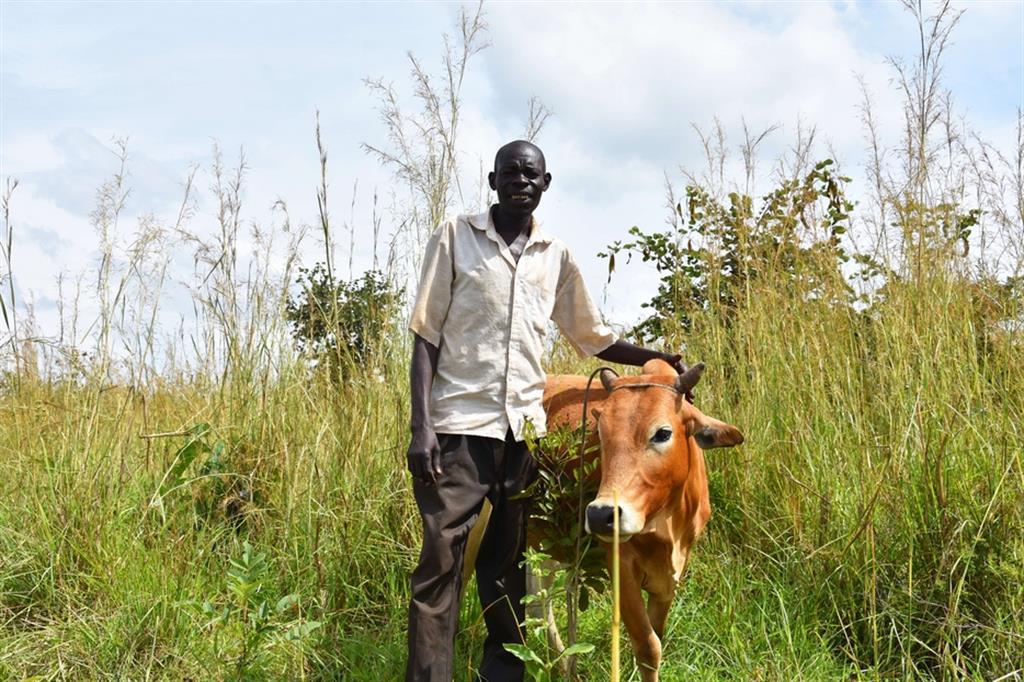 Robinson e Alice ora sono pronti a ripartire: insieme curano i campi di sesamo e cotone, i risparmi sono cresciuti e hanno potuto acquistare alcune mucche e capre. - Avsi