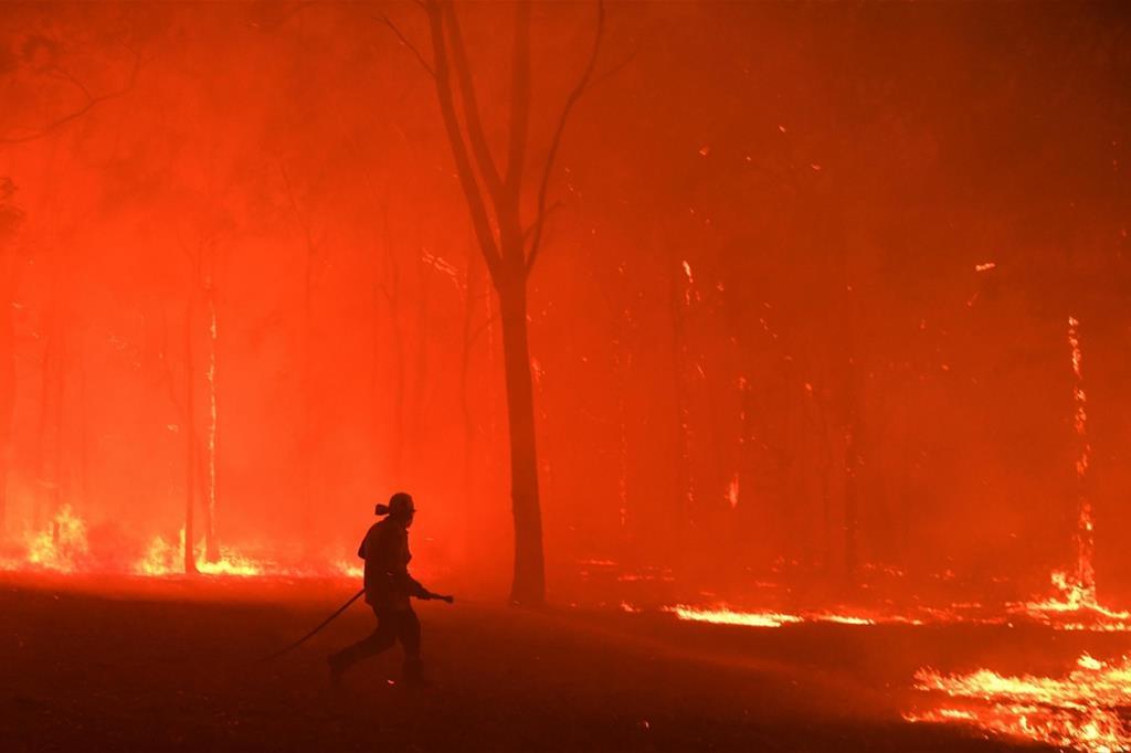 Pompieri lottano contro il fuoco in Australia nei pressi di Colo Heights a sud-ovest di Sydney, nel novembre scorso