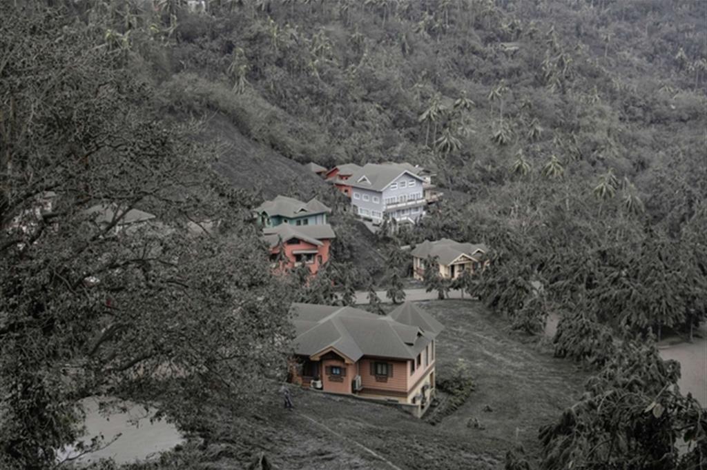 Alberi e case ricoperti di cenere - Reuters / Eloisa Lopez