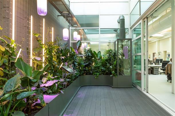 Ecco la Fabbrica dell'Aria (pulita) per farci respirare con le piante