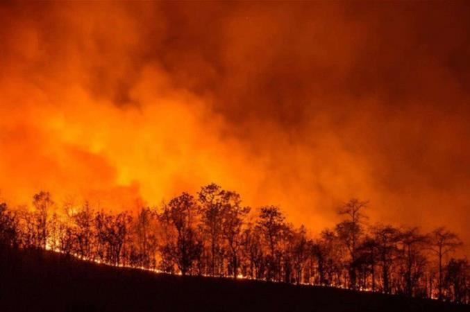La Sardegna brucia. I vescovi: la politica affronti l'emergenza