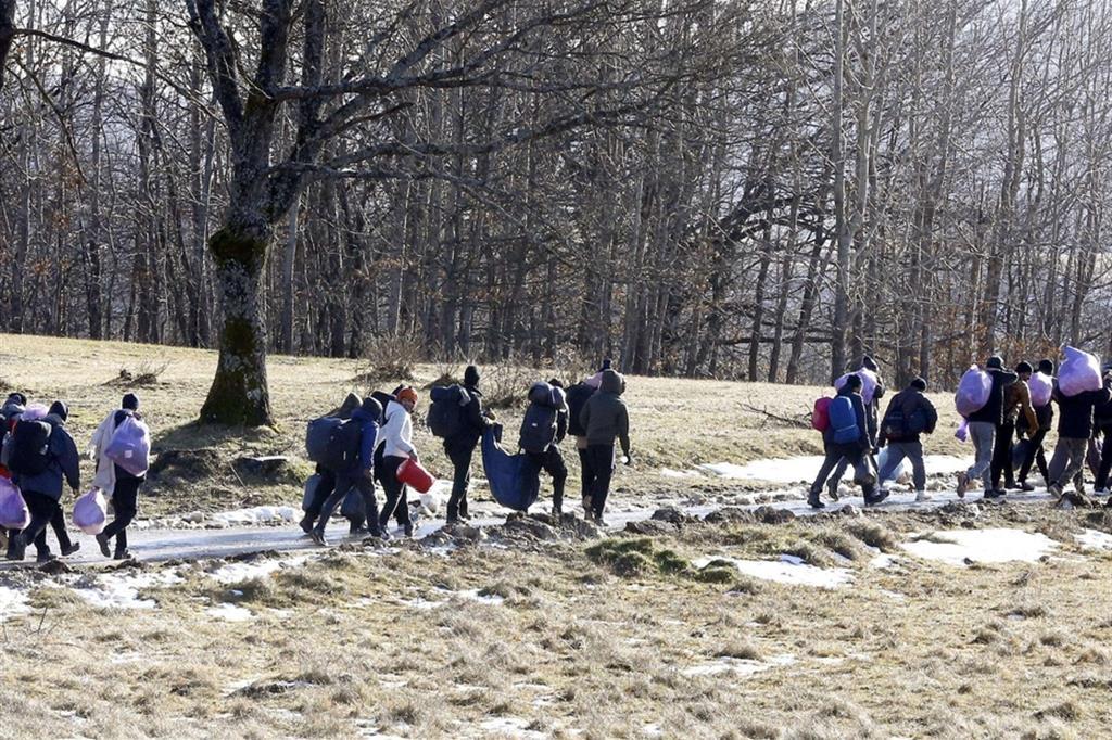 In marcia nel gelo, con la neve, attraverso i boschi - Ansa